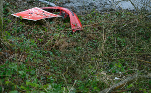 Dense green undergrowth with a road sign and red bumper in the top left hand corner