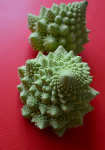 Two Romanesco cauliflower next to each other on a red background